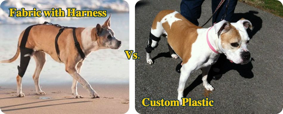 Fabric vs Custom dog knee braces